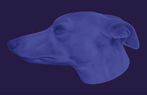 blue-series-portada