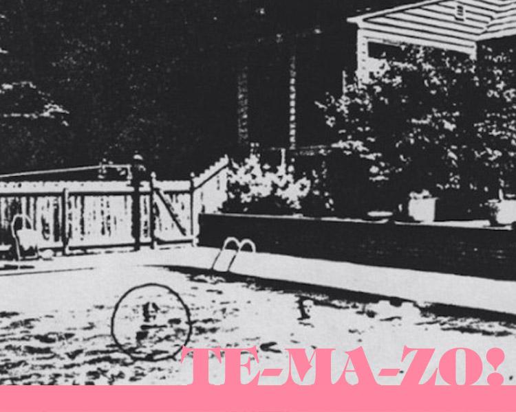 the-radio-dept-temazo