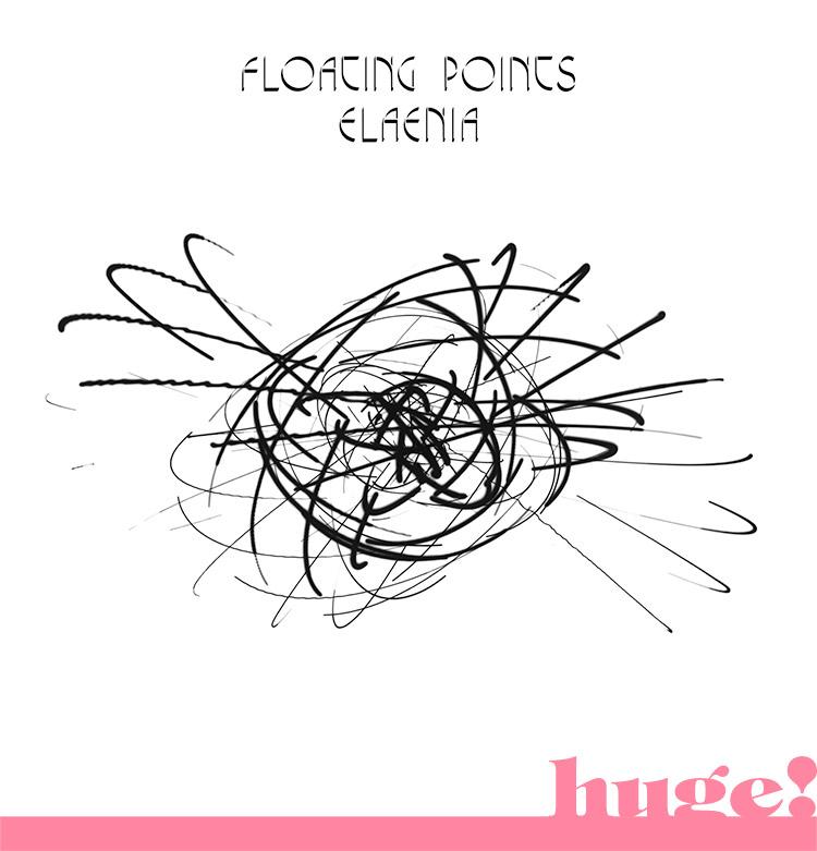floating-points-elaenia